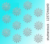 silver snowflakes isolated on... | Shutterstock . vector #1257246640