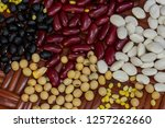 a selection of legumes | Shutterstock . vector #1257262660