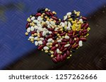a selection of legumes | Shutterstock . vector #1257262666