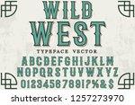 vector illustration font script ... | Shutterstock .eps vector #1257273970