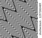 vector seamless pattern.... | Shutterstock .eps vector #1257283489