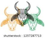 zebu cow  indian cow.... | Shutterstock .eps vector #1257287713