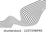 monochrome stripe waving line... | Shutterstock .eps vector #1257298990