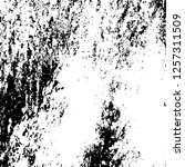 grunge background black and... | Shutterstock .eps vector #1257311509