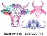 a set of colorings. zebu cow ... | Shutterstock .eps vector #1257327493