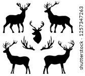 deer pattern wallpaper | Shutterstock .eps vector #1257347263
