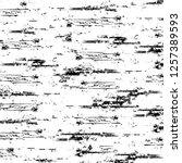 vector grunge overlay texture.... | Shutterstock .eps vector #1257389593