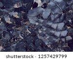 textured dark blue marble stone ... | Shutterstock . vector #1257429799