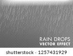 rain drops on the transparent...   Shutterstock .eps vector #1257431929