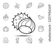 hazelnut icon. simple outline...