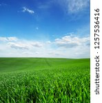 field of green grass and sky | Shutterstock . vector #1257536416