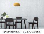3d rendering   illustration of... | Shutterstock . vector #1257733456