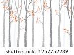 tree birch background   Shutterstock .eps vector #1257752239