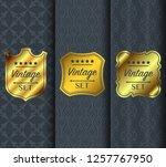 golden vintage pattern on dark... | Shutterstock .eps vector #1257767950