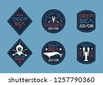 nautical style patch rigging set | Shutterstock .eps vector #1257790360