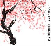 Japanese Cherry Tree Blossom....