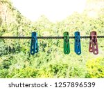 clothe clamp on clamp line | Shutterstock . vector #1257896539