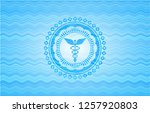 caduceus medical icon inside... | Shutterstock .eps vector #1257920803