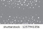 glitter snowflakes background.... | Shutterstock .eps vector #1257941356