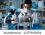 microscopist working with blood ... | Shutterstock . vector #1257943456