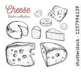 cheese collection. vector hand... | Shutterstock .eps vector #1257996139