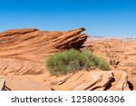 Desert Plants With Blue Sky In...