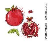 vector illustration  pomegranate | Shutterstock .eps vector #1258062613