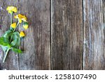 yellow flowers on a rustic wood ... | Shutterstock . vector #1258107490
