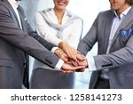 group of business people... | Shutterstock . vector #1258141273