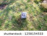 double arrow sculpted on a... | Shutterstock . vector #1258154533