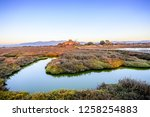 sunset view of vegetation and...   Shutterstock . vector #1258254883