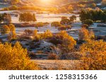 autumn grazing scenery on... | Shutterstock . vector #1258315366