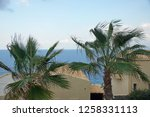 greek landscape with palm trees ... | Shutterstock . vector #1258331113