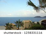 greek landscape with palm trees ... | Shutterstock . vector #1258331116