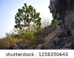 nile river near aswan  egypt   Shutterstock . vector #1258350643