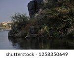 nile river near aswan  egypt   Shutterstock . vector #1258350649