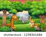 cartoon wild animal enjoying in ... | Shutterstock . vector #1258361686
