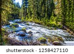 forest river waterfall... | Shutterstock . vector #1258427110