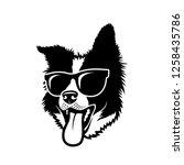 border collie dog wearing...   Shutterstock .eps vector #1258435786