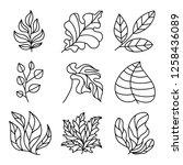 leaves icon set. leaves logo... | Shutterstock .eps vector #1258436089