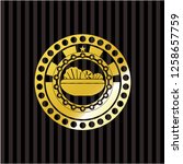 salad icon inside shiny badge   Shutterstock .eps vector #1258657759