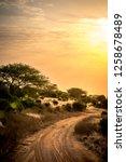 African Safari Landscape With...