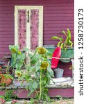 shabby chic front porch and... | Shutterstock . vector #1258730173