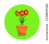 spring colorful flowers in pot...   Shutterstock .eps vector #1258839283