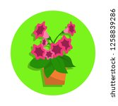 spring colorful flowers in pot...   Shutterstock .eps vector #1258839286