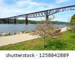 at 1.3 miles  walkway over the... | Shutterstock . vector #1258842889