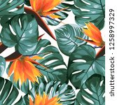 tropical greenery philodendron... | Shutterstock .eps vector #1258997329