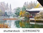 hangzhou china 9 december  2018 ... | Shutterstock . vector #1259034070