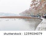 hangzhou china 9 december  2018 ... | Shutterstock . vector #1259034079