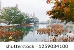 hangzhou china 9 december  2018 ... | Shutterstock . vector #1259034100